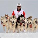 Retordica 2013 c1 Course chiens de traineaux