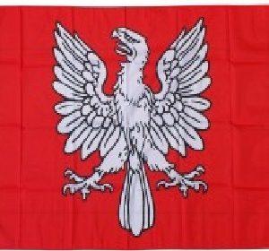 Bannière de Tarentaise de 120 X 120 cm