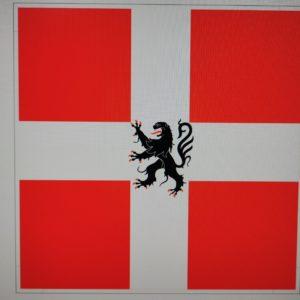 Bannière Savoie ducale de 50 X 50 cm
